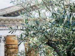 Le tourisme, pilier de l'économie en Occitanie