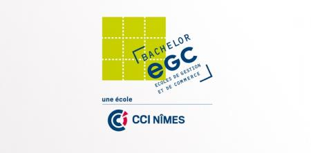 Une nouvelle école de gestion et de commerce ouvre à Nîmes en septembre 2016.