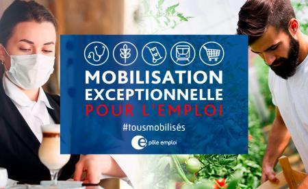 La plateforme « Mobilisation emploi » s'enrichit avec des offres d'emplois saisonniers, dont plus de 500 en Occitanie.