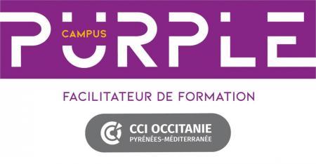 Inauguration du CFA de la CCI de l'Aude et création de la marque Purple Campus