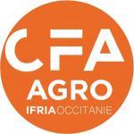 L'IFRIA Occitanie ouvre 3 nouvelles formations en apprentissage en septembre 2021.